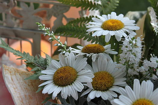 Daisy Bouquet by Sherry Hahn