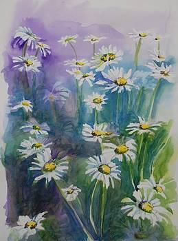 Daisy Field by Gretchen Bjornson