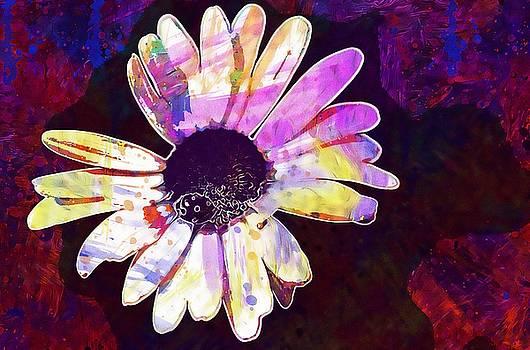 Daisy Flower Nature Plant White  by PixBreak Art