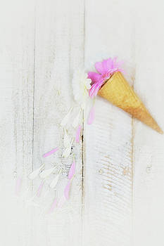 Daisy Ice Cream Cone by Susan Gary