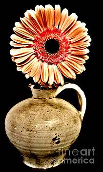 Daisy in Pottery Jug by Marsha Heiken