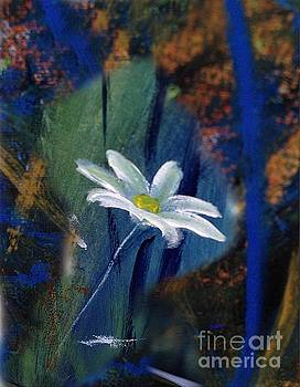 Daisy by Karen Day-Vath