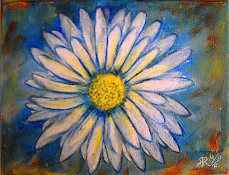 Daisy by Rashmi Rao