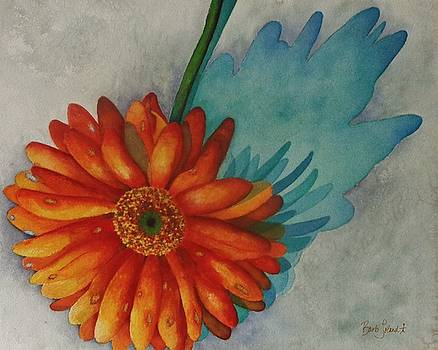 Daisy Shadow by Barb Toland