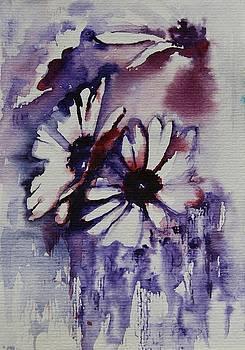 Daisy by Tatiana Ilieva