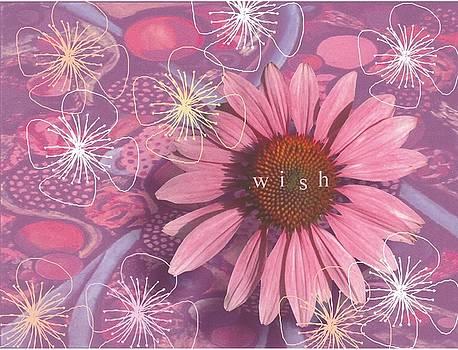 Daisy Wish by Laurel Porter-Gaylord