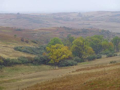 Dakota West September Prairie by Cris Fulton