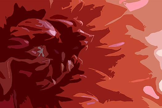 Dahlia On Fire by Don Mennig