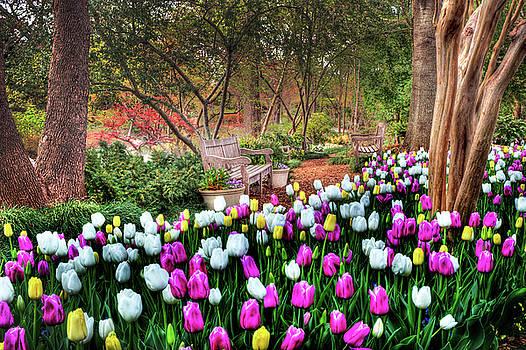 Tamyra Ayles - Dallas Arboretum