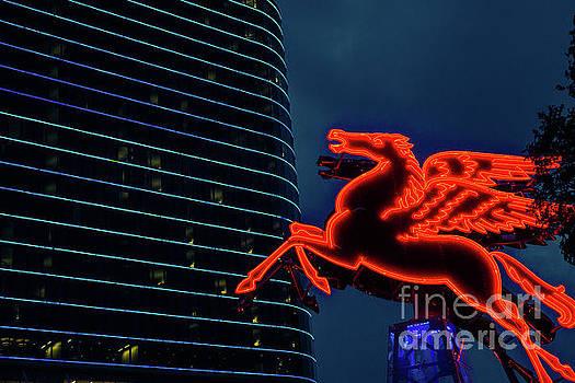 Dallas Neon I by Sonja Quintero