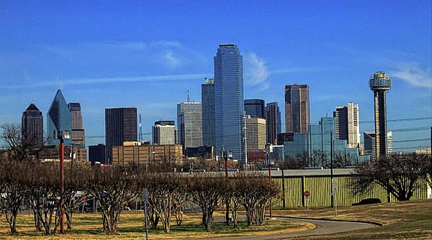 Dallas by Philip A Swiderski Jr