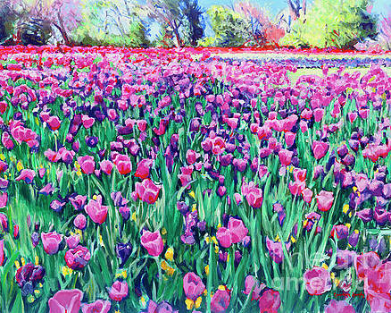 Dallas Tulips by Candace Lovely