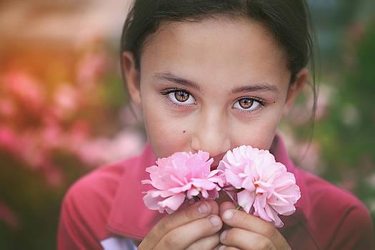Damask Roses by Marji Lang