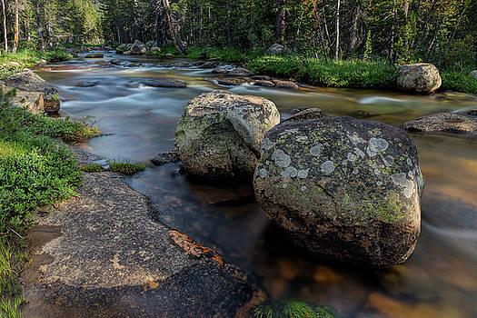Dana Creek Yosemite by Eric Bjerke Sr