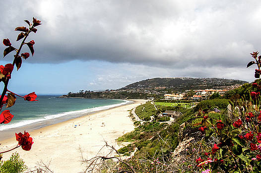 Dana Point Beach by Jean Haynes