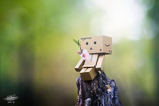 Danbo - Flower by Adnan Bhatti