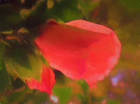 Dance of the Flowers by Debra Lynch