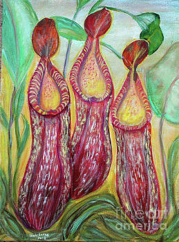 Dance Of The Pitcher Plants by Lyric Lucas