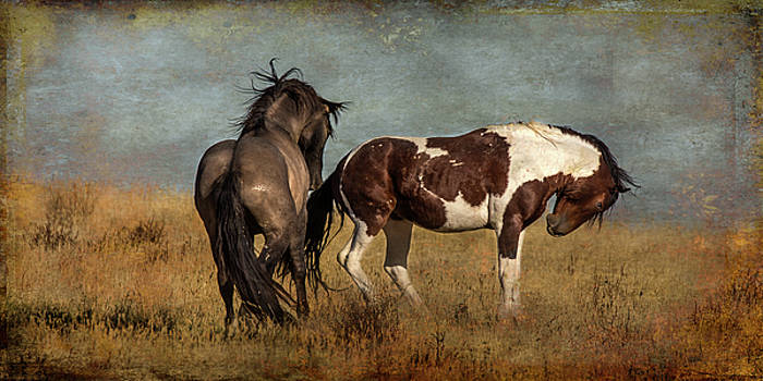 Dance partners by Mary Hone