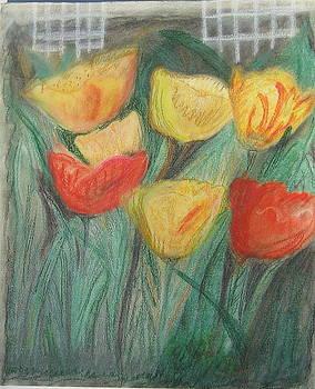 Dancing Tulips by Elizabeth A Gawronski