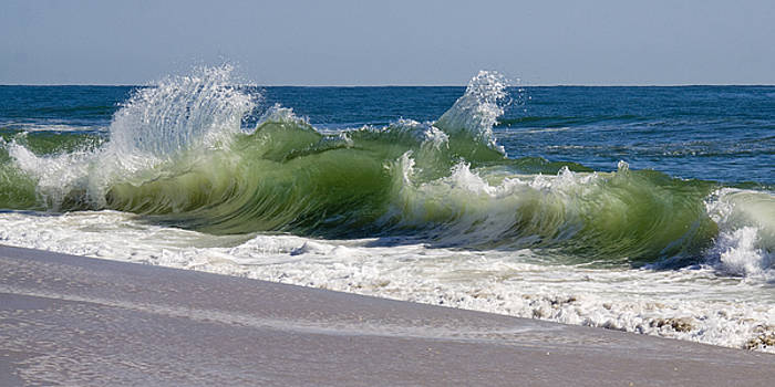 Dancing Waves by Kelly S Andrews