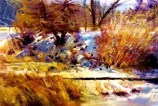 Dancing Winter Shadows by Joseph Barani
