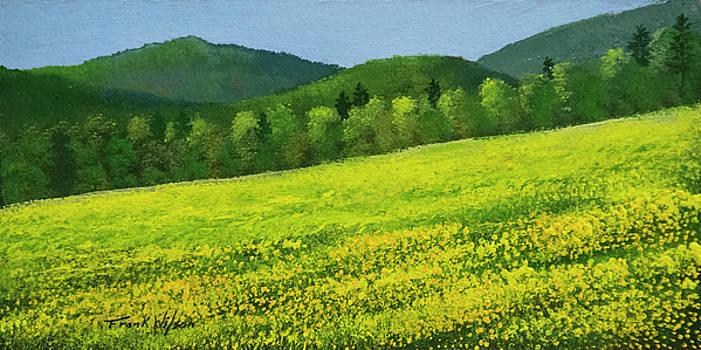Dandelion Bloom by Frank Wilson