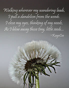 Dandelion Dreams- Fine Art And Poetry by KayeCee Spain