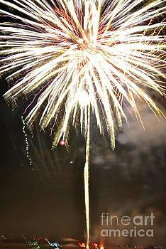George D Gordon III - Dandelion Firework