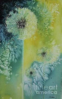 Dandelion by Jackie Kirby