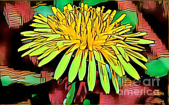 Dandelion by Lita Kelley