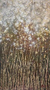 Dandelions by Steve Ellis