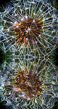 Dandy Universe - Paint - Reflection  by Steve Harrington