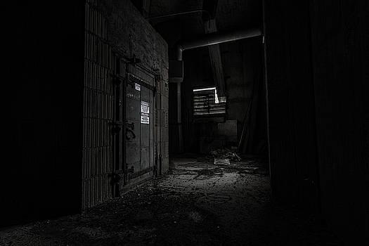 Danger in the Shadows by CJ Schmit