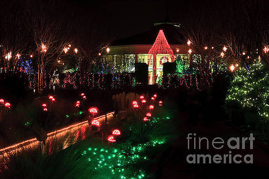 Daniel Stowe Pavilion at Christmas by Jill Lang