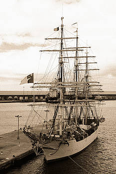 Gaspar Avila - Danish training ship