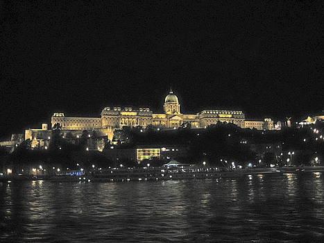 Danube Elegance by Judith Morris