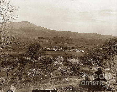 California Views Mr Pat Hathaway Archives - Danville California circa 1915