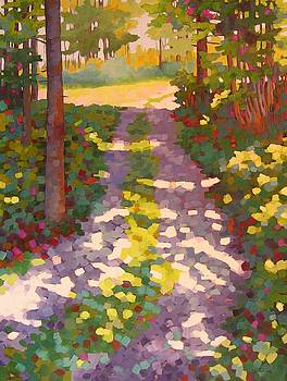 Dappled Lane by Mary McInnis