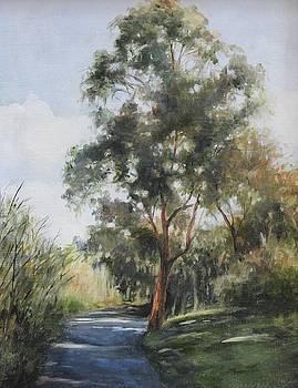 Dappled Path by Maralyn Miller