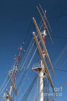 Dar Pomorza ship mast by Arletta Cwalina