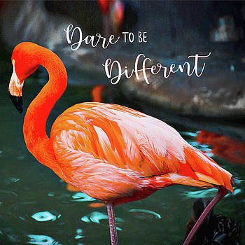 Dare to be Different Chic, Orange Pink Flamingo by Marcia Luce at Luceworks