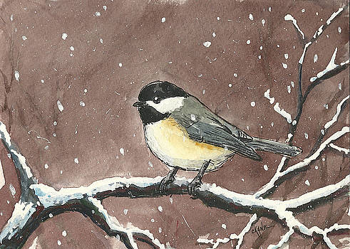 Dariana's Chickadee by Christine Camp