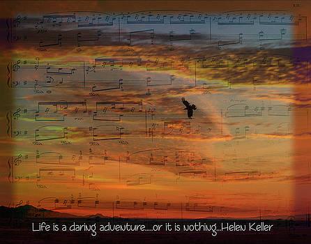 Daring Adventure by Nadine Berg