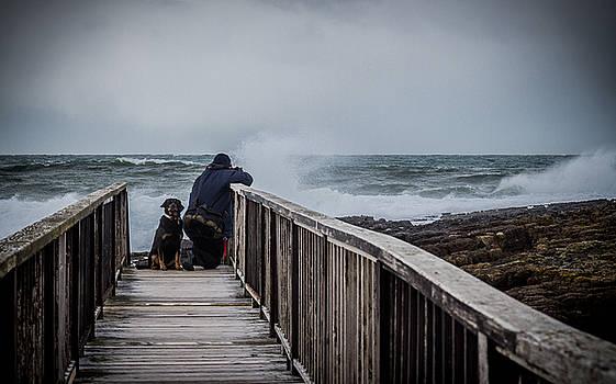Daring the swells by Alex Leonard