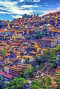 Steve Harrington - Darjeeling - Paint