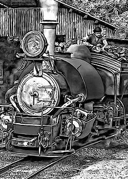 Steve Harrington - Darjeeling Toy Train bw