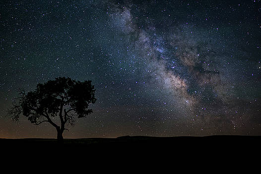 Dark at Night by Scott Bean