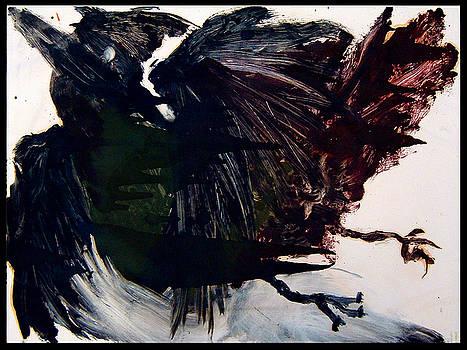 Dark Cardinal by Diana Ludwig