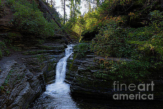 Dark Falls by Steve Triplett